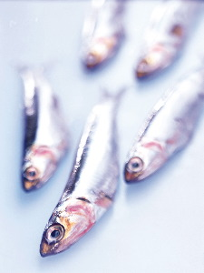 Fish oils can help prevent the onset of eczema