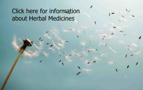 Information about Herbal Remedies